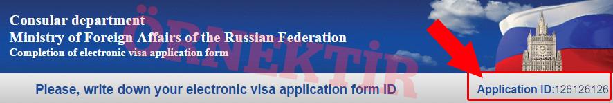 rusya-vize-basvuru-formu-doldurma